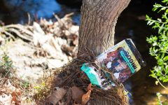 Trash in creek shows need for the Green Team on LHS campus